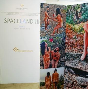 SPACELAND III Aftermath. John S. Rabe. Bermudez Projects.Photo Courtesy Jennifer Susan Jones