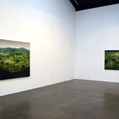 Amy Bennett, Gallery Installation View. ©2016. Small Changes Every Day. Richard Heller Gallery. Photo courtesy Kristine Schomaker, All rights reserved