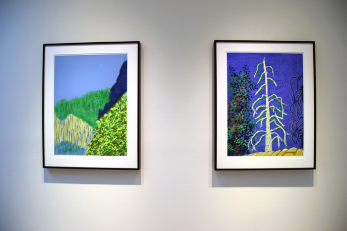 David Hockney - Photo by Kristine Schomaker at L.A. Louver Gallery.