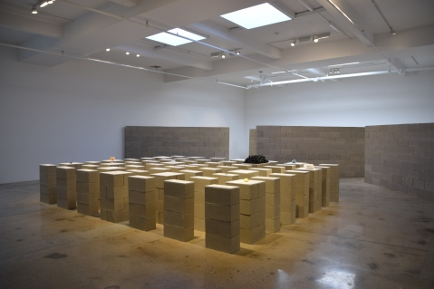 "Pablo Rasgado's ""Horizon"" at Steve Turner Gallery Photo Credit Kristine Schomaker"