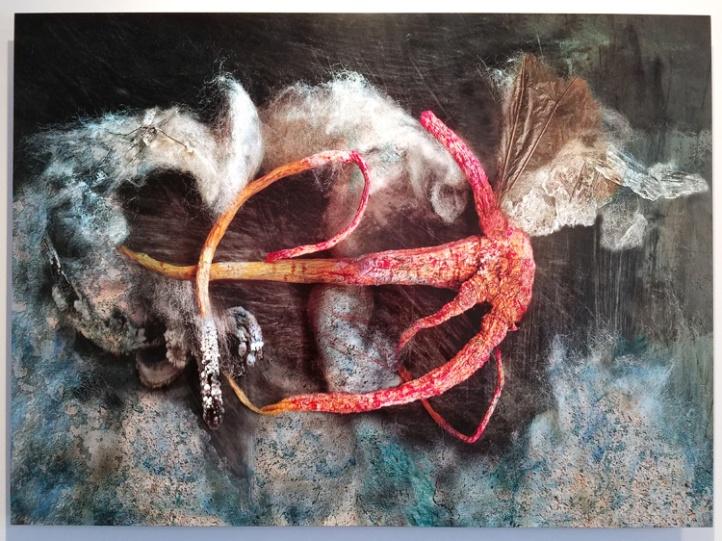 Aline Mare. Jill Joy Gallery. Photo Credit Kristine Schomaker