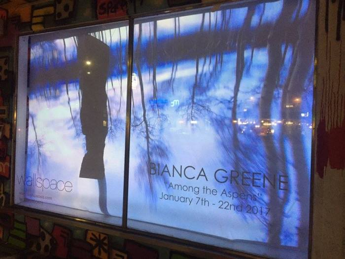 Among the Aspens - Video Installation by Bianca Greene at Wallspace LA