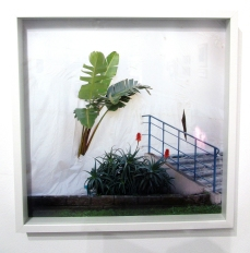 Kate Shapiro/Tree Thru Plastic. LAST Projects. Photo Credit Patrick Quinn