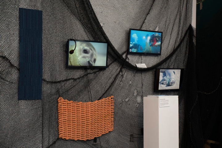 Entangled exhibition at the Animal Museum. Photo credit Lawrence Pierce