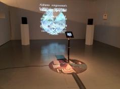 News Wheel. Long Beach City College Art Gallery. Photo courtesy Jody Zellen