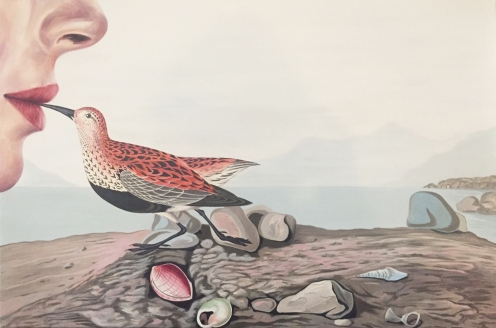 Erik White. Red Backed Sandpiper. Birds of America: Explorations of Audubon: The Paintings of Larry Rivers and Others. Photo Courtesy of 101/Exhibit.