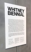 2017 Whitney Biennial. Whitney Museum of American Art, New York City, New York. Photo Credit Mario Vasquez.