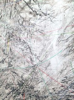 Julie Mehretu. The Broad. Photo Credit Kristine Schomaker