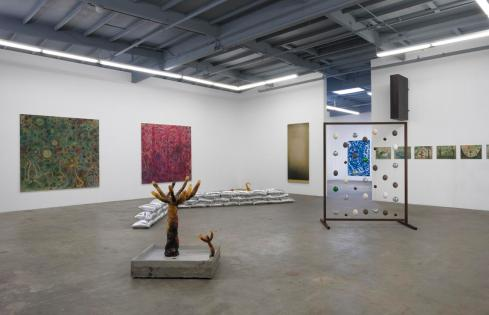 Amino Acids. Installation View. Photo Courtesy of ACME Gallery.
