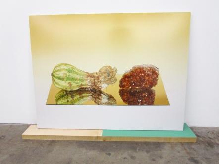 Heather Rasmussen - Untitled (Half moldy squash and Citrine on mirror). ACME Gallery. Photo Credit Patrick Quinn.