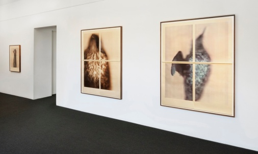 Ann Hamilton at Gemini GEL. Photo Courtesy of the Gallery.