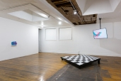 Janine Oleson: Can you feel it? Installation view. Courtesy the artist and Commonwealth and Council. Photo_ by Ruben Diaz.