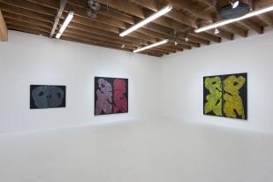 Monique Prieto, Luster Chimento Contemporary. Photo Courtesy of the Artist and the Gallery. Photo Credit: Ruben Diaz.