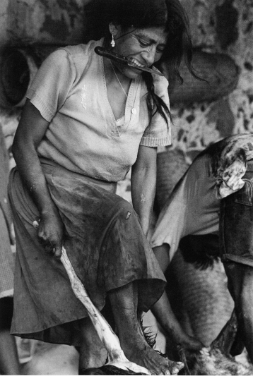 Graciela Iturbide. PhotoGRAPHIC. Photo Courtesy of Rose Gallery.