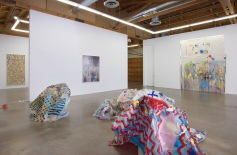 """Kim Dingle """"CRUSH and UNCRUSHED,"""" Installation View. Susanne Vielmetter Los Angeles Projects. Photo credit: Robert Wedemeyer."""