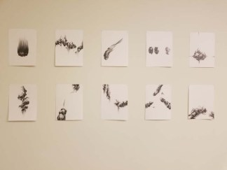 Nancy Baker Cahill. ELEMENTAL | Marking Time. Descanso Gardens, Sturt Haaga Gallery. Photo Credit Kristine Schomaker