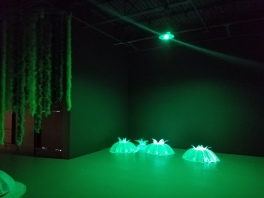 Hypoxia by James Peterson at Montclair Place. Photo Credit: Jacqueline Bell Johnson.