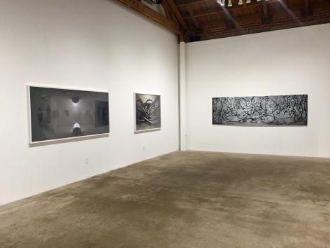 David DiMichele at Denk Gallery. Photo Credit Shana Nys Dambrot.