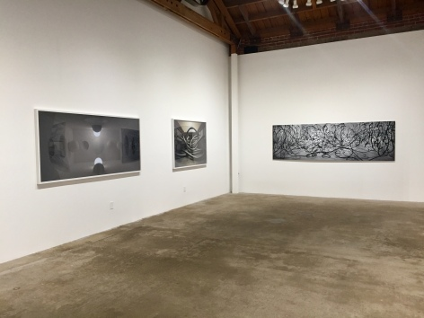 David DiMichele at Denk Gallery. Photo Credit Shana Nys Dambrot.