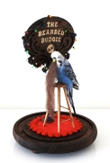 """""""The Bearded Budgie"""" by Kimberly Bunting. Sacrificial Lamb. Lethal Amounts Gallery. Photo Credit Jennifer Susan Jones"""