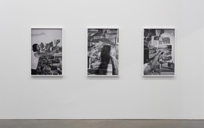 Installation view of Catherine Opie