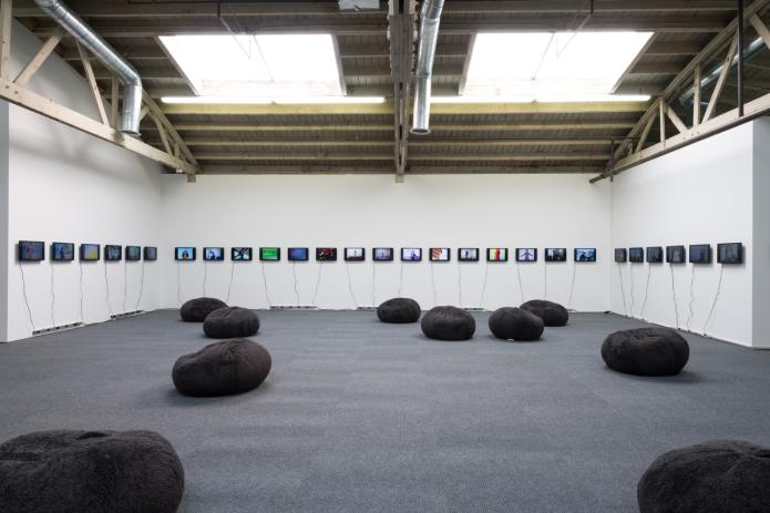 Petra Cortright. Cam Worls. UTA Artist Space. Photo Courtesy UTA