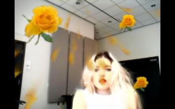 bridal shower w rose 2013 1 min 37 seconds. Petra Cortright. Cam Worls. UTA Artist Space. Photo Courtesy UTA