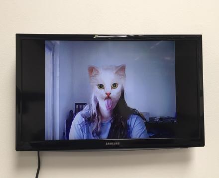 cats spirt spsit spit 2008 27 seconds. Petra Cortright. Cam Worls. UTA Artist Space. Photo Courtesy Shana Nys Dambrot