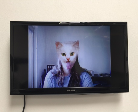 cats spirt spsit spit 2008 27 seconds. Petra Cortright. Cam Worls. UTA Artist Space. Photo Courtesy Shana Nys Dambrot