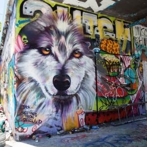 SMOK, Vodka Wolf ©2017 SAiR; Photo credit Bandit