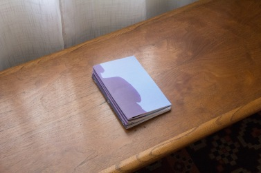 Rachel Yezbick, Cover Me, Artist pamphlet at Garden. Photo Courtesy of the Gallery.