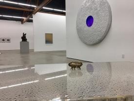 Bioperversity, Nicodim Gallery, Photo credit: Shana Nys Dambrot.