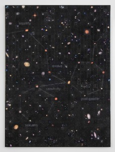 Rachel Lachowicz, Cosmos. Photo courtesy of the artist.
