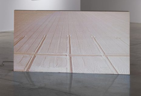 Lukas Marxt, Force of Nature at Steve Turner Gallery. Photo Courtesy of the Gallery.