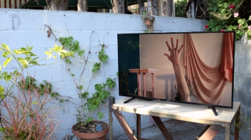 Ali Prosch For Alraune with love, garden view. Elephant Art Space. Photo courtesy Astri Swendsrud.
