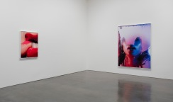 Installation view of Marilyn Minter at Regen Projects, Los Angeles May 19 - June 23, 2018. Photo: Brian Forrest, Courtesy Regen Projects, Los Angeles.