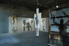 Poetry of Scale and Space, Surrogate Gallery Projects. Photo Courtesy Holly Boruck.