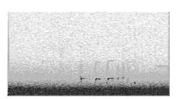 K.r.m. Mooney Spectrogram I, 2018, Spectrogram, 6 x 3 ⅛ inches. Photo courtesy of the gallery.