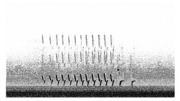 K.r.m. Mooney Spectrogram II, 2018, Spectrogram, 6 x 3 ⅛ inches. Photo courtesy of the gallery.