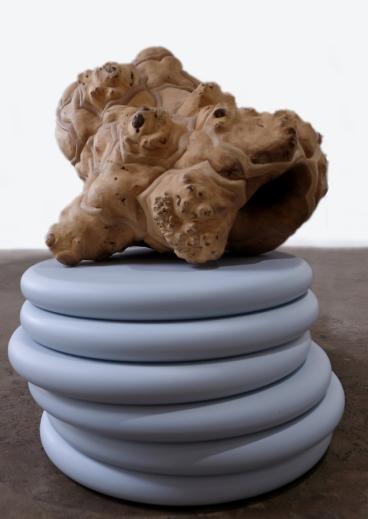 Ross Rudel_Dabbat al-ard, 2010_18_Wood, acrylic, paint_24h x 21w x 20d in