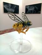 Paul Paiement, Hybrids E in Insect/Mammal at Coagula Curatorial. Photo credit: Patrick Quinn.