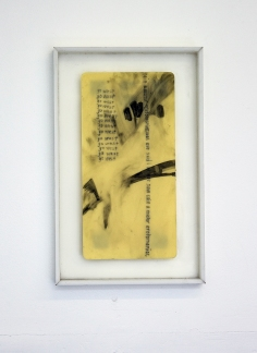 Camille Schefter. Fool's Gold at Noysky Projects. Photo courtesy of Noysky Projects