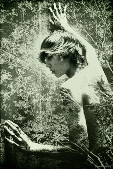 John Waiblinger. The Beauty of Men (an iconography of desire) LACDA. Photo Courtesy of the Artist