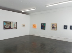 Installation view of Divided Brain at Lava Projects. Photo courtesy of the Gallery.