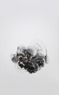 "Yevgeniya Mikhailik, ""Grow"", A Slow Conflict, Grand Central Art Center; Image courtesy of the artist"