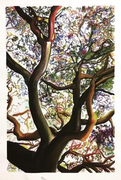 Rebecca Hamm, Untitled 1, TreeSpeak Series 1; Image courtesy of the artist