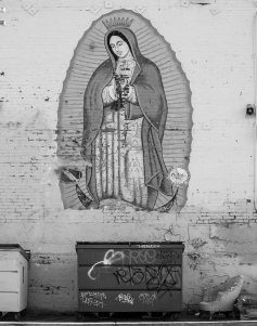 Diane Cockerill, Guadalupe; Image courtesy of the artist