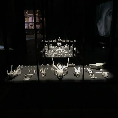 Dr. Trevor Borg, Venice Biennale; Photo credit Sydney Walters