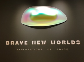 Gisela Colon. Brave New Worlds, Palm Springs Art Museum; Photo credit Genie Davis