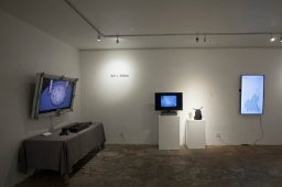 Art+Video. TAG Gallery; Photo credit Kristine Schomaker